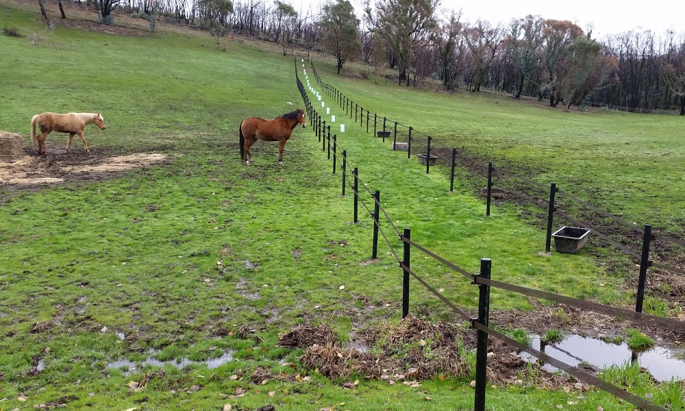 FENCING Awards nomination - Kersbrook Equestrian Centre project by StockGuard
